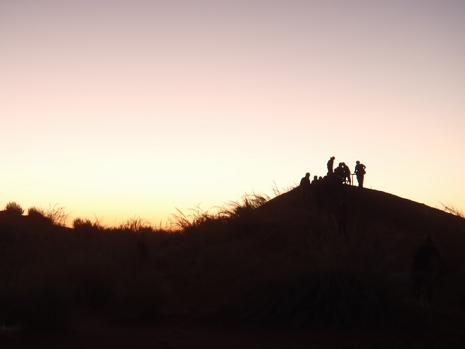 ナミブ砂漠の画像 p1_14
